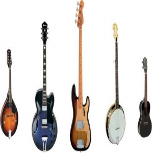 Skype Banjo, Bass, Bass Guitar, Guitar (Acoustic), Guitar (Electric), Mandolin, Ukulele Tutor> Tom Downer